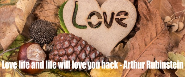 Love-life-and-life-will-love-you-back
